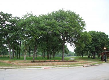 Greenbelt Across from 5636 Oakleigh Lane